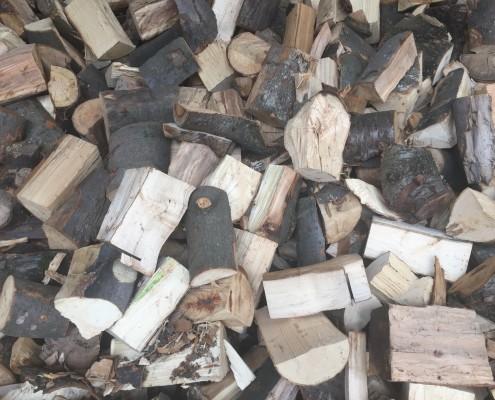Fresly split logs seasoning indoors