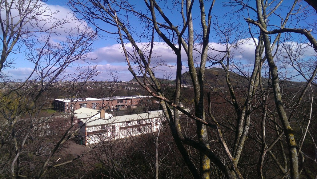 The arborists view north to Sailsbury Crags
