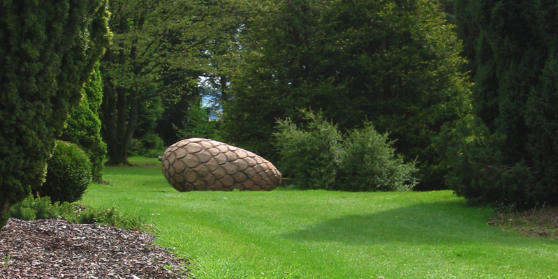 Oak pine cone carved by tree surgeon Tom Dixon